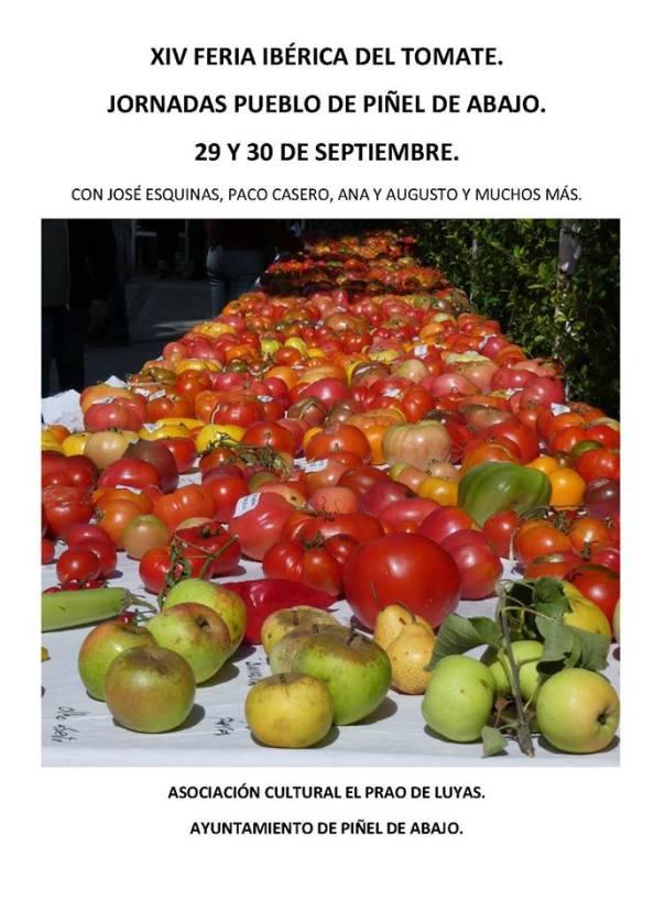 feria tomate